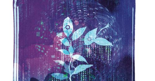 Interpreting the torrential flow of data