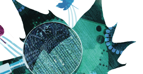 Thin data: a new framework for understanding the world
