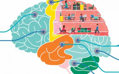 Lessons from brain surgery for organizational change