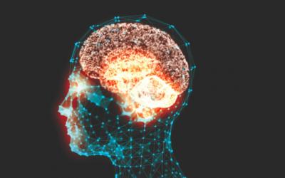Neuroscience and Performance