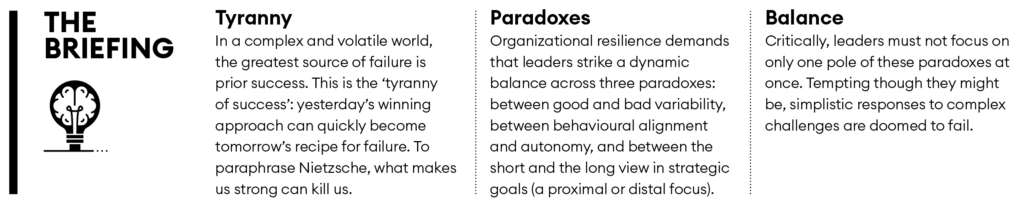 The three paradoxes of resilience briefing